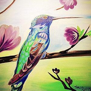 Spring-Hummingbird